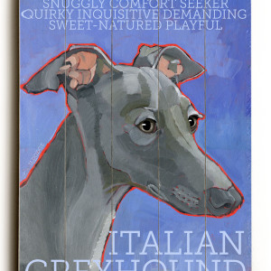 Homemade Dog Food Recipes For Italian Greyhound