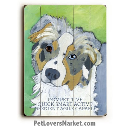 Australian Shepherd - Dog Pictures, Dog Print, Dog Art. Wall Art and Wooden Signs with Dog Pictures and Dog Quotes. Features the Australian Shepherd dog breed.