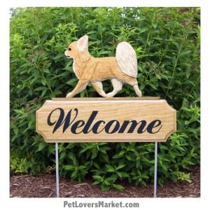 Welcome Sign with Chihuahua (Long Haired, Fawn). Welcome sign and dog sign for dog lovers. Welcome sign is perfect for home and garden decor, garden accents, outdoor accents, unique garden statues, garden statues online, best garden decor, garden stake decor, decorative garden stake, outdoor home accents, unique garden decor, outdoor home decor. Features the Chihuahua dog breed.
