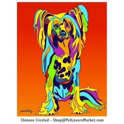 Chinese Crested Pictures. Dog portrait and dog painting by Michael Vistia. Canvas Prints and Matted Prints available. Dog Art. Chinese Crested dog breed.