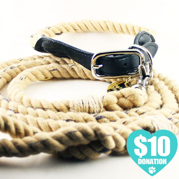 Vintage Dog Collar and Leash for Sale