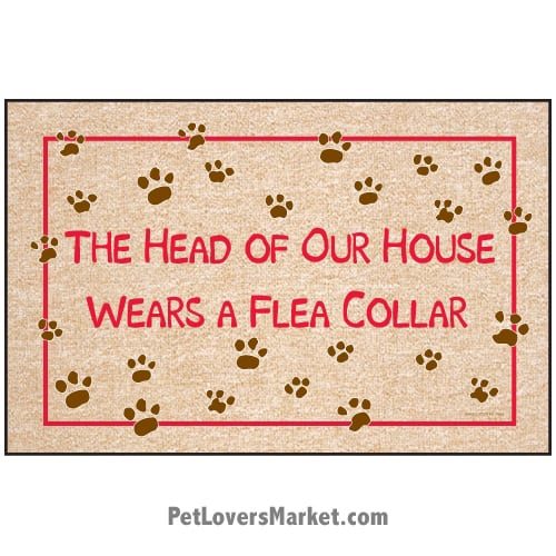 "Funny doormats / dog placemats: ""The Head of Our House Wears a Flea Collar"". Add funny doormats and dog placemats to your dog home decor! Our dog placemats and funny doormats feature funny dog quotes and dog pictures."