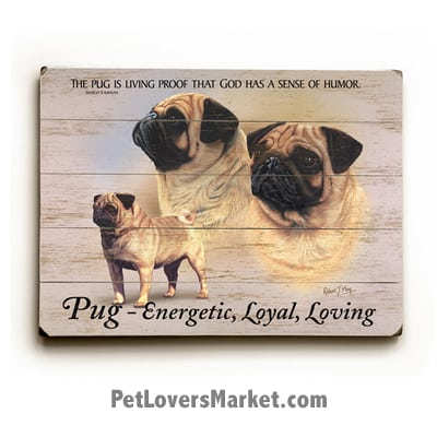 "Pugs - Dog Picture, Dog Print, Dog Art. ""The pug is living proof that God has a sense of humor."" - Margot Kaufman (famous dog quotes). Wall Art and Wooden Signs with Dog Pictures and Dog Quotes. Features the Pug dog breed."