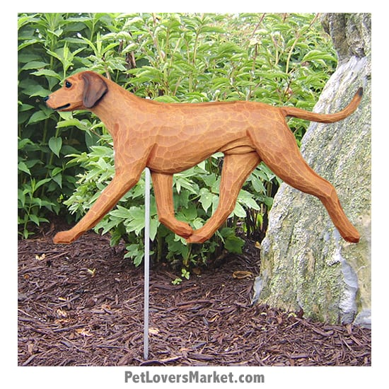 Rhodesian Ridgeback Dog Sign / Yard Sign / Garden Stake. Garden Accents and Gifts for Dog Lovers. Perfect for Home and Garden Decor. Part of our collection of yard signs and garden accents -- with dog breeds. Also use for outdoor accents, unique garden statues, garden statues online, best garden decor, garden stake decor, decorative garden stake, outdoor home accents, unique garden decor, outdoor home decor. Features Rhodesian Ridgeback dog breed.