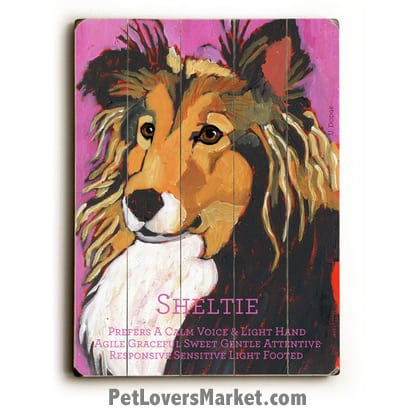 Shetland Sheepdog (Sheltie) - Dog Picture, Dog Print, Dog Art. Wall Art and Wooden Signs with Dog Pictures and Dog Quotes. Features the Shetland Sheepdog dog breed.