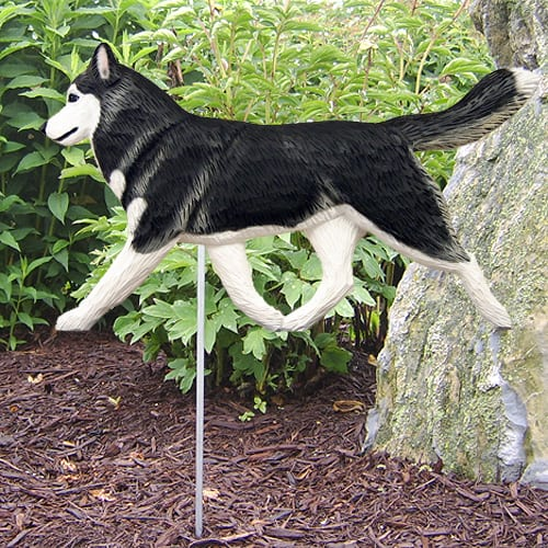 Siberian Husky Statue Dog Statues with Free Shipping
