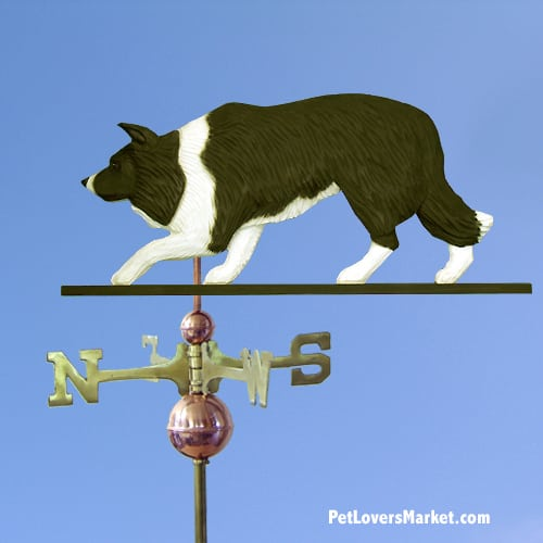 Weathervanes: Border Collie Dog Weathervane for Roof and Garden Decor. Weathervane made in USA. Gifts for Dog Lovers.