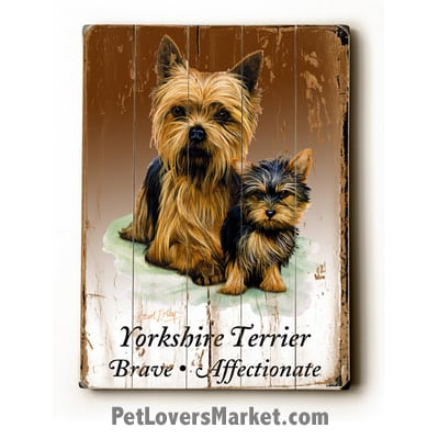 Yorkies (Yorkshire Terriers) - Dog Pictures, Dog Print, Dog Art. Wall Art and Wooden Signs with Dog Pictures and Dog Quotes. Features the Yorkshire Terrier (Yorkie) dog breed.
