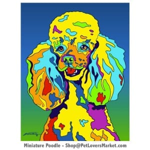 Poodle Art: Toy Poodle Pictures for Sale. Toy Poodle Painting by Michael Vistia.