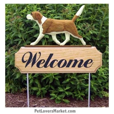 Welcome Sign with Beagle (red and white). Welcome sign and dog sign for dog lovers. Welcome sign is perfect for home and garden decor, garden accents, outdoor accents, unique garden statues, garden statues online, best garden decor, garden stake decor, decorative garden stake, outdoor home accents, unique garden decor, outdoor home decor. Features Beagle dog breed.