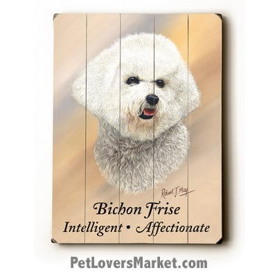 Bichon Frise: Dog Picture, Dog Print, Dog Art. Wall Art and Wooden Signs with Dog Pictures and Dog Quotes. Features Bichon Frise Dog Breed.