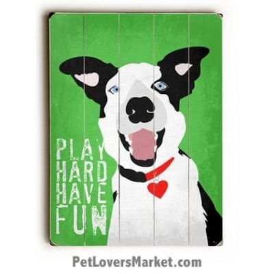 """""""Play Hard. Have Fun."""" Motivational Quote with Border Collie - Dog Picture, Dog Print, Dog Art. Wall Art and Wooden Signs with Dog Pictures and Dog Quotes. Features the Border Collie dog breed."""