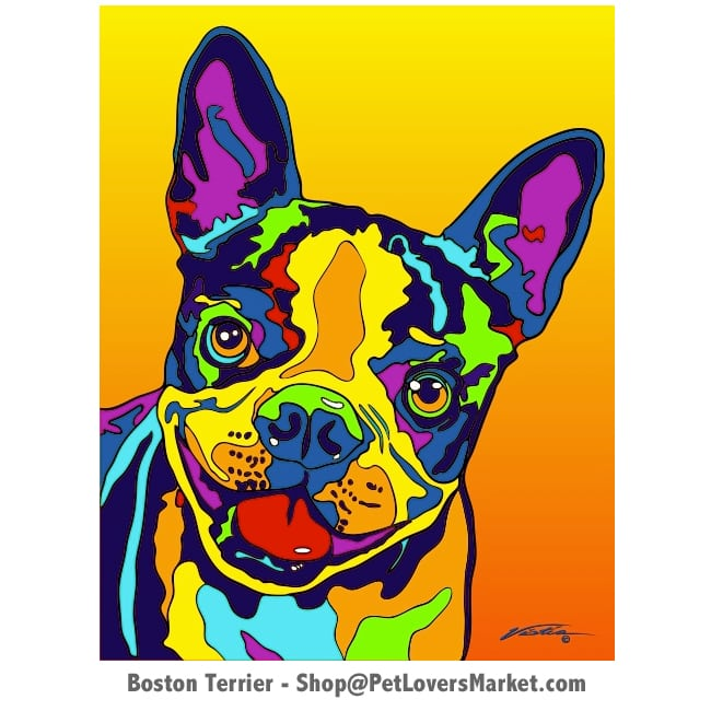 Dog Portraits: Boston Terrier, a dog painting and dog portrait by Michael Vistia. Available in canvas prints and matted prints. Boston Terrier pictures as canvas prints.