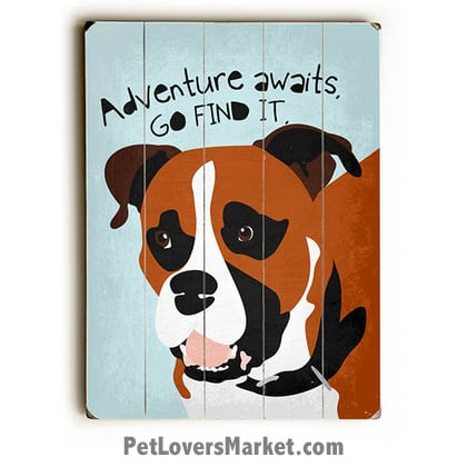 "Boxer Dog - ""Adventure Awaits. Go Find it."" Motivational Quote. Dog Pictures, Dog Print, Dog Art. Wall Art and Wooden Signs with Dog Pictures and Dog Quotes. Features the Boxer dog breed."