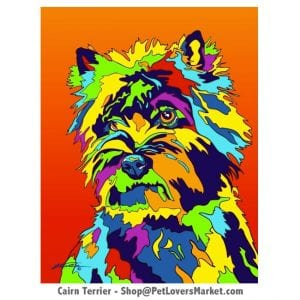Dog Portraits: Cairn Terrier art. Dog paintings and dog portraits by Michael Vistia. Cairn Terrier art is available in canvas prints and matted prints. Dog painting features the Cairn Terrier dog breed.