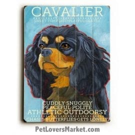 Cavalier King Charles Spaniel - Dog Pictures, Dog Print, Dog Art. Wall Art and Wooden Signs with Dog Pictures and Dog Quotes. Features the Cavalier King Charles Spaniel dog breed.