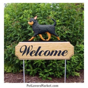Welcome Sign with Chihuahua (Black/Tan). Welcome sign and dog sign for dog lovers. Welcome sign is perfect for home and garden decor, garden accents, outdoor accents, unique garden statues, garden statues online, best garden decor, garden stake decor, decorative garden stake, outdoor home accents, unique garden decor, outdoor home decor. Features the Chihuahua dog breed.