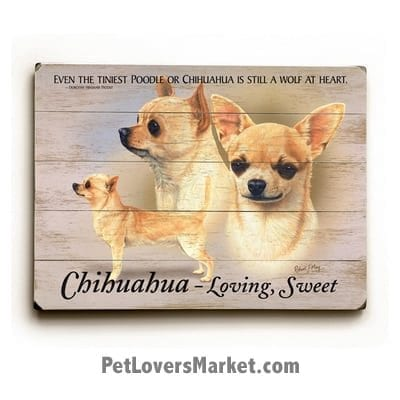 """Chihuahua: Dog Picture, Dog Print, Dog Art. """"Even the tiniest poodle or chihuahua is still a wolf at heart."""" ~ Dorothy Hinshaw (famous dog quotes). Wall Art and Wooden Signs with Dog Pictures and Dog Quotes. Features the Chihuahua Dog Breed."""