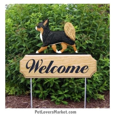 Welcome Sign with Chihuahua (Long Haired, Tricolor). Welcome sign and dog sign for dog lovers. Welcome sign is perfect for home and garden decor, garden accents, outdoor accents, unique garden statues, garden statues online, best garden decor, garden stake decor, decorative garden stake, outdoor home accents, unique garden decor, outdoor home decor. Features the Chihuahua dog breed.