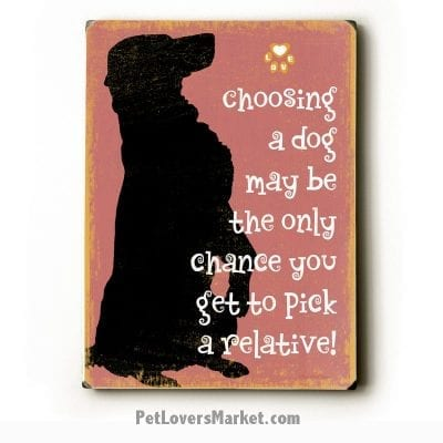 """""""Choosing a Dog May be the Only Chance You Get to Pick a Relative!"""" - Funny dog signs with funny dog quotes. Gifts for Dog Lovers. Wooden sign."""