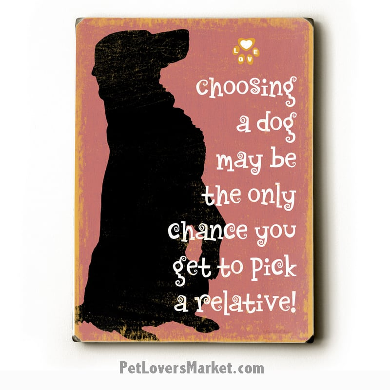 """Choosing a Dog May be the Only Chance You Get to Pick a Relative!"" - Funny dog signs with funny dog quotes. Gifts for Dog Lovers. Wooden sign."