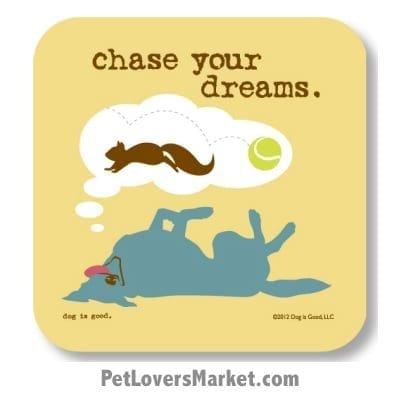 "Coasters: ""chase your dreams"". Coasters feature Dog Pictures with Dog Quotes for Dog Lovers. Made in USA by Dog is Good®"