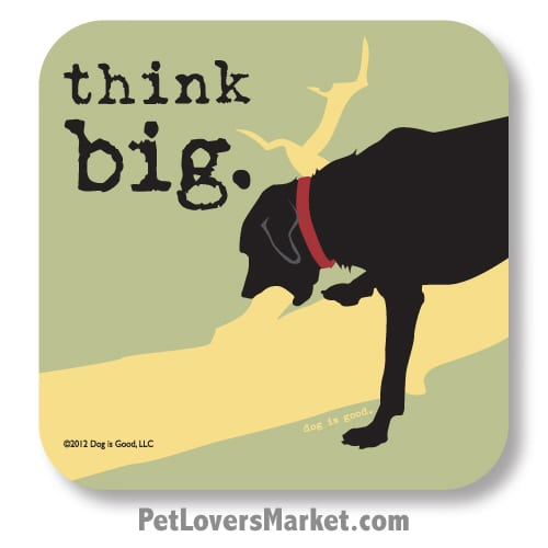 "Coasters: ""think big"". Coasters with Funny Dog Pictures, Dog Quotes & Dog Art. Coasters are great gifts for Dog Lovers. Made in USA by Dog is Good®"