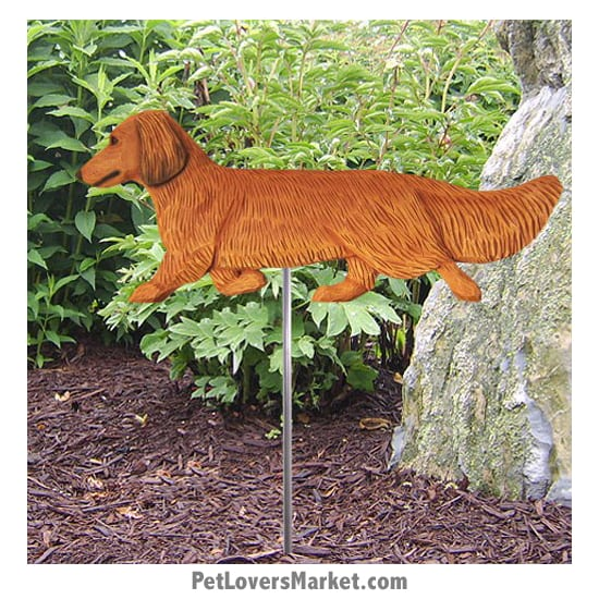 Dachshund Yard Sign / Garden Stake. Garden Accents and Gifts for Dog Lovers. Perfect for Home and Garden Decor. Part of our collection of yard signs and garden accents -- with dog breeds. Also use for outdoor accents, unique garden statues, garden statues online, best garden decor, garden stake decor, decorative garden stake, outdoor home accents, unique garden decor, outdoor home decor. Features long-haired Dachshund dog breed.