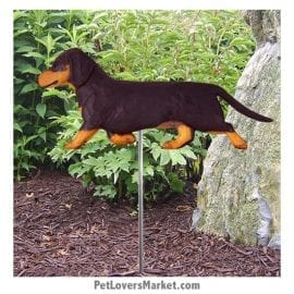 Dachshund Yard Sign / Garden Stake. Garden Accents and Gifts for Dog Lovers. Perfect for Home and Garden Decor. Part of our collection of yard signs and garden accents -- with dog breeds. Also use for outdoor accents, unique garden statues, garden statues online, best garden decor, garden stake decor, decorative garden stake, outdoor home accents, unique garden decor, outdoor home decor. Features black / tan Dachshund dog breed.