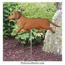 Dachshund Yard Sign / Garden Stake. Garden Accents and Gifts for Dog Lovers. Perfect for Home and Garden Decor. Part of our collection of yard signs and garden accents -- with dog breeds. Also use for outdoor accents, unique garden statues, garden statues online, best garden decor, garden stake decor, decorative garden stake, outdoor home accents, unique garden decor, outdoor home decor. Features red Dachshund dog breed.