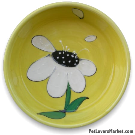 Daisy Dog Bowl. Part of Collection of Ceramic Dog Bowls; Designer Dog Bowls; Cute Dog Bowls. Dog Bowls are Made in USA. Hand-painted. Lead Free. Microwave Safe. Dishwasher Safe. Food Safe. Pet Safe. Design features flowers.