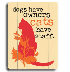 """Dogs have owners. Cats have staff."" - funny cat quotes and cat art as gifts for cat lovers"