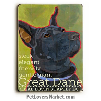 Great Dane - Dog Picture, Dog Print, Dog Art. Wall Art and Wooden Signs with Dog Pictures and Dog Quotes. Features the Great Dane dog breed.