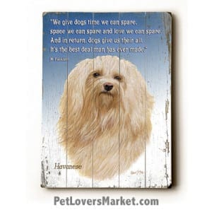 """Havanese - Dog Picture, Dog Print, Dog Art. """"We give dogs time we can spare, space we can spare, and love we can spare. In return, dogs give us their all. It's the best deal man has ever made."""" Margery Facklam (famous dog quotes). Wall Art and Wooden Signs with Dog Pictures and Dog Quotes. Features the Havanese dog breed."""