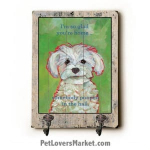 Wall Hooks for Dog Lovers: I'm so glad you're home somebody pooped in the hall. Use as coat hooks, wall mounted coat rack, key holder, key rack, leash holder, gifts for dog lovers.