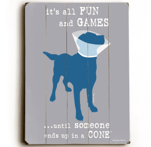 Funny Dog Signs: Dog with Cone / It's all fun and games until someone ends up in a cone