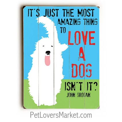"""It's Just the Most Amazing Thing to Love a Dog, Isn't It?"" John Grogan (Marley and Me quotes) - Dog signs with dog quotes. Dog art, dog wooden sign, wall art. Gifts for dog lovers."