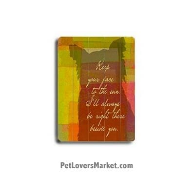 Keep Your Face to the Sun - Wooden Signs with Quotes