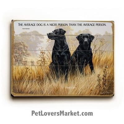"""Labrador Retrievers (Black Labs) - Dog Picture, Dog Print, Dog Art. """"The average dog is a nicer person than the average person."""" - Andy Rooney (famous dog quotes). Wall Art and Wooden Signs with Dog Pictures and Dog Quotes. Features the Labrador Retriever dog breed."""