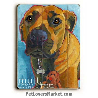 Mutt Dog - Dog Picture, Dog Print, Dog Art. Wall Art and Wooden Signs with Dog Pictures and Dog Quotes. Celebrates Mutts.