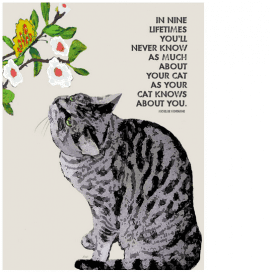"""In nine lifetimes you'll never know as much about your cat as your cat knows about you."" - cat quotes and cat art as gifts for cat lovers"