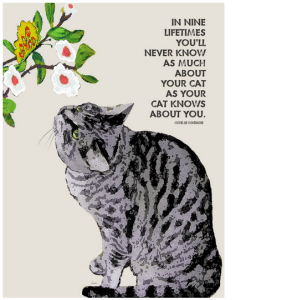 Cat Print / Cat Painting: In Nine Lifetimes, You'll Never Know As Much About Your Cat As Your Cat Knows About You. Wooden Sign. Cat Art. Cat Decor. Gifts for Cat Lovers.
