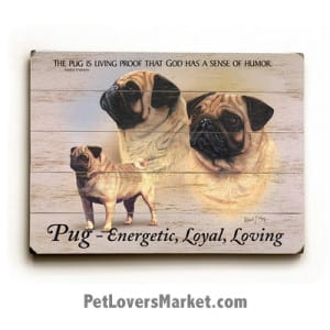 """Pugs - Dog Picture, Dog Print, Dog Art. """"The pug is living proof that God has a sense of humor."""" - Margot Kaufman (famous dog quotes). Wall Art and Wooden Signs with Dog Pictures and Dog Quotes. Features the Pug dog breed."""