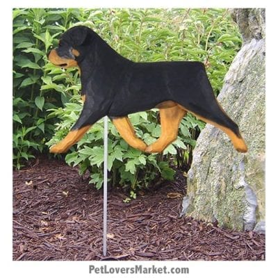 Rottweiler Dog Sign / Yard Sign / Garden Stake. Garden Accents and Gifts for Dog Lovers. Perfect for Home and Garden Decor. Part of our collection of yard signs and garden accents -- with dog breeds. Also use for outdoor accents, unique garden statues, garden statues online, best garden decor, garden stake decor, decorative garden stake, outdoor home accents, unique garden decor, outdoor home decor. Features Rottweiler dog breed.