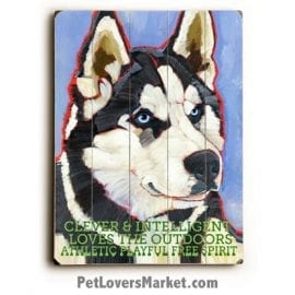 Siberian Husky - Dog Picture, Dog Print, Dog Art. Wall Art and Wooden Signs with Dog Pictures and Dog Quotes. Features the Siberian Husky dog breed.
