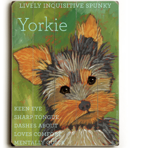 Dog Breeds: Yorkshire Terriers (Yorkie)